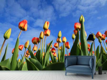Photo Wallpaper Tulips tower to the sky