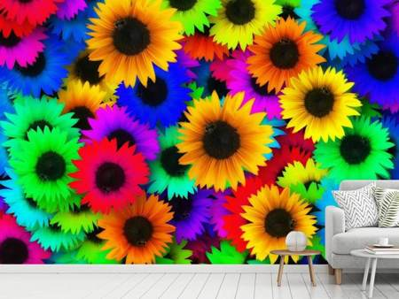 Fototapet Colorful sunflowers
