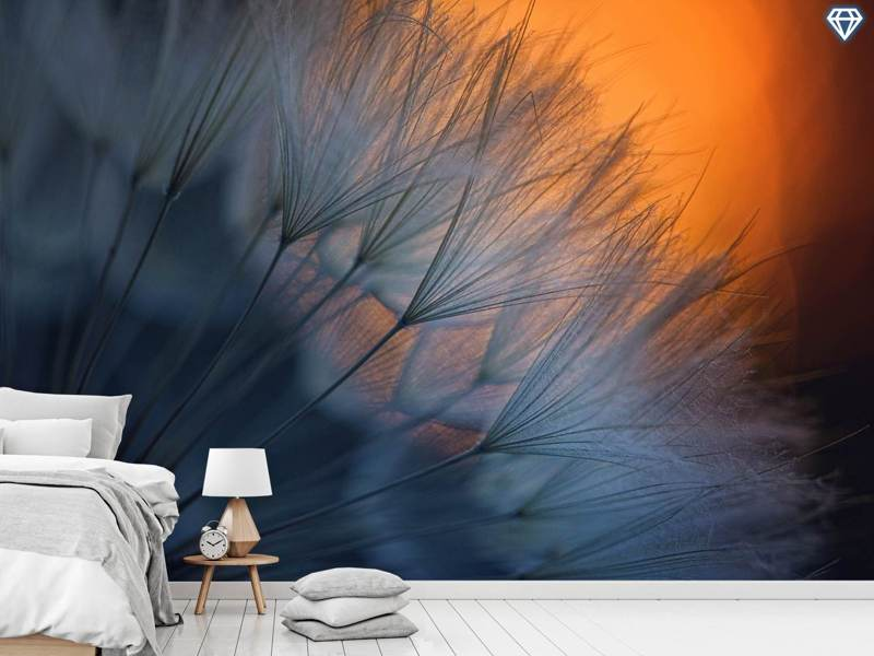 Photo Wallpaper Feathers