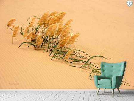 Photo Wallpaper Pampas Grass In Sand Dune