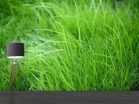 Photo Wallpaper Blades Of Grass